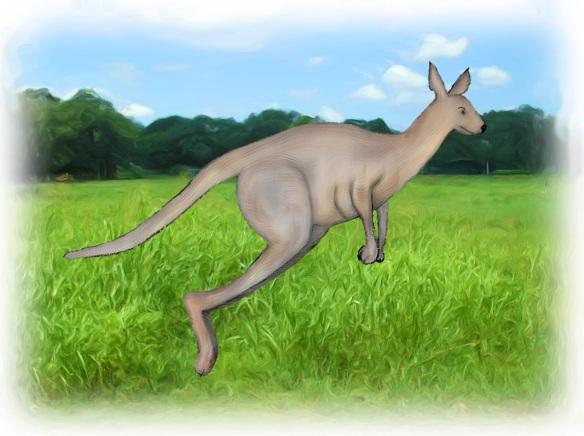 kangarooField_Painting