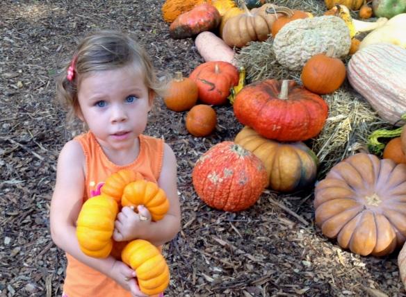 HephzPumpkins